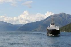 Nový pohon pro norské lodě? Energie z mrtvých ryb