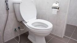 Převratný skok ve vývoji: Vynález splachovacího záchodu!