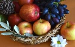 Vědci zkoumají vlivy zdravé životosprávy