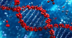 Geny ovlivňují délku působení očkovacích látek