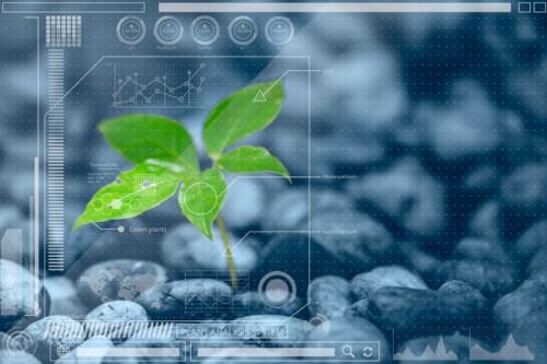 Mezinárodní konference rostlinných biologů
