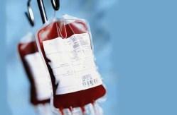 Měsíc zdravé krve: Co se odehrává za dveřmi hematologických laboratoří?