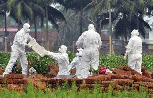 Může být virus nipah globální hrozbou?