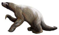 Pohádková sešlost: Američané odhalili pravěké setkání mamuta, lenochoda a lidského dítěte