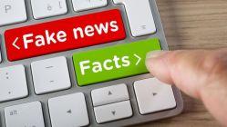 Češi a jejich kladivo na fake news