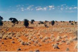 Nedostatek úrodné půdy v Africe