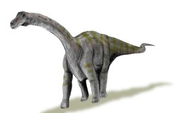 Titanosauři byli soběstační už po vylíhnutí