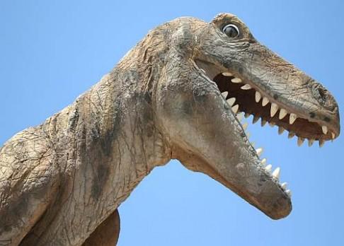 Dinosauří metabolismus promluvil do oteplení