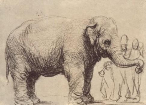 Rembrandt namaloval prvního slona
