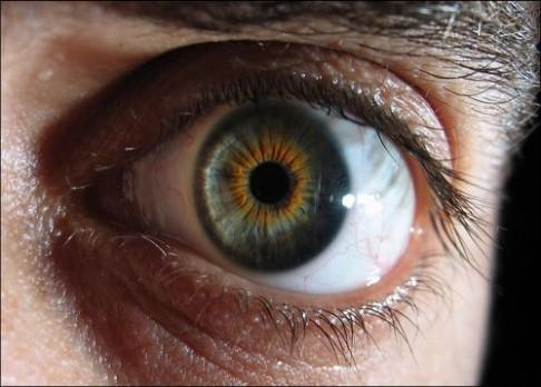 Naše oko se nechá obelstít