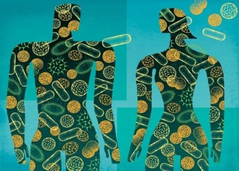 Mikrobi by mohli posílit zdraví obyvatel měst