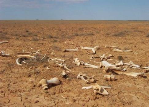 """""""Velké sucho"""" v Austrálii končí"""