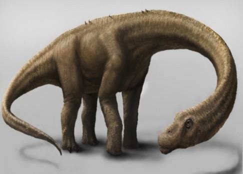 Paleontologové našli kostru obřího dinosaura