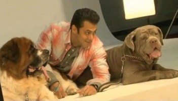 Salman Khan with his Dogs