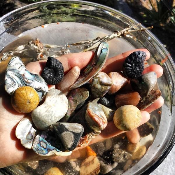 July 7th Secrets of the Sea Crystal Grid $65