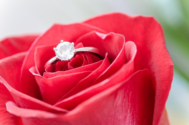 Data nuntii tale 1
