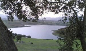 liqeni_farkes