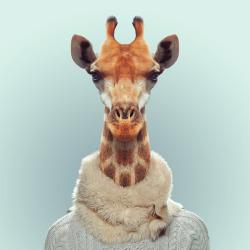 Girafa por Yago Partal para ZOO RETRATOS