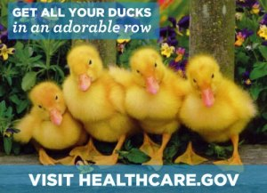Get your ducks in a row—visit healthcare.gov to #GetCovered starting October 1st!