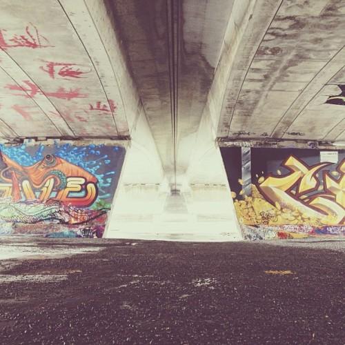 Find momo at the graffiti wall.