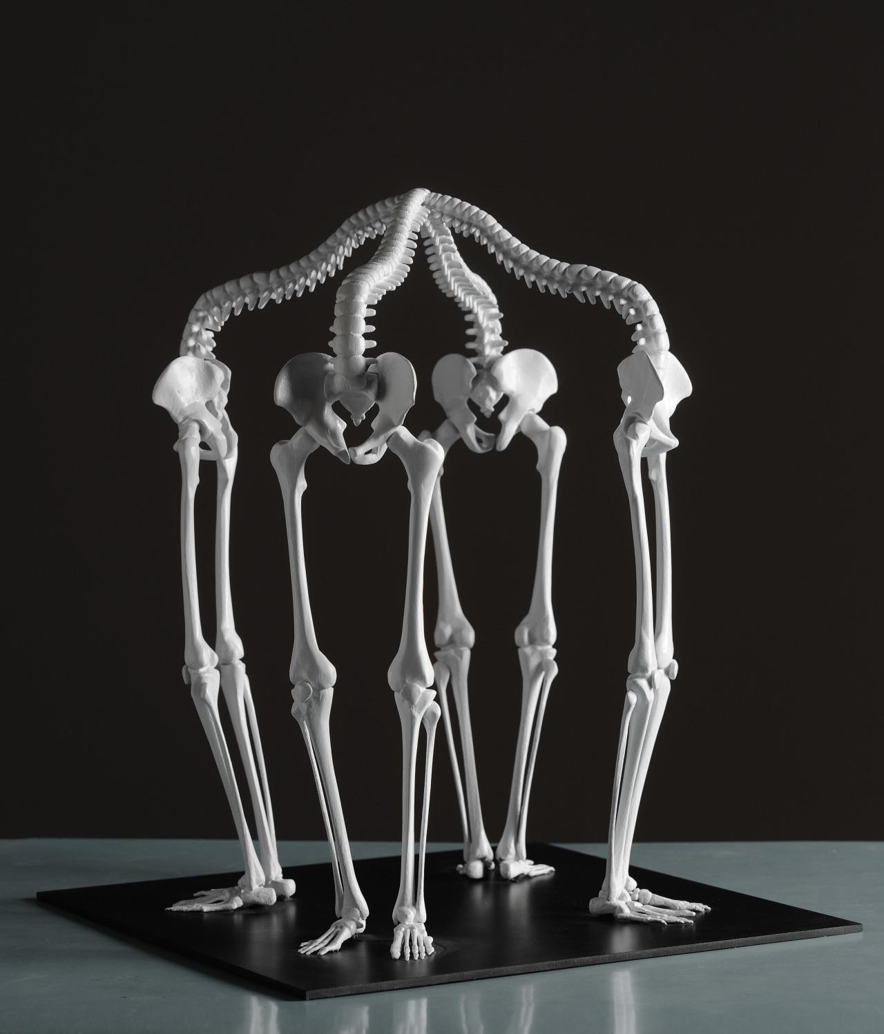 Skeletal sculptures by Monika Horčicová<br /><br /> My Amp Goes To 11:Twitter|Instagram