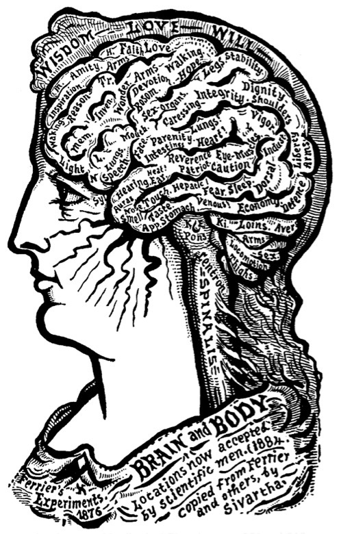 indypendent-thinking:  Brain and Body Alesha Sivartha, The Book of Life: The Spiritual and Physical Constitution of Man, 1912 (via The 11 Best Art and Design Books of 2011 | Brain Pickings)