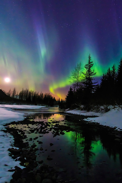 tect0nic:  Aurora moonset by Cj Kale via 500px.