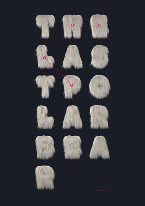 The Last Polar Bear by Kim Holm