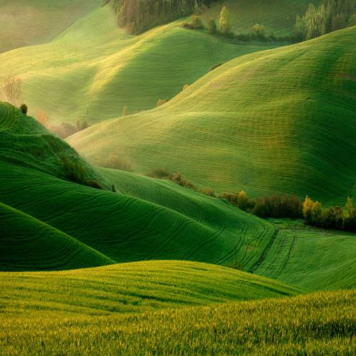 onmyowntwohands:  myaloysius:  thewhitebeyond:  sunsurfer:  Torre a Castello, Tuscany byMarek Kiedrowski