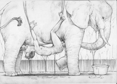 elephant fucks girl