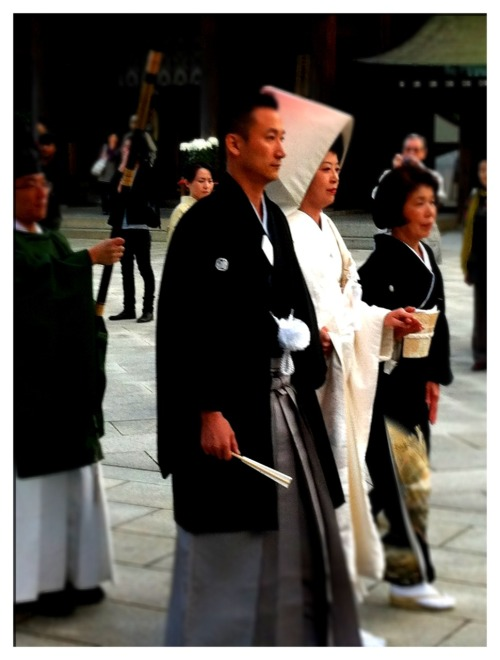 The Beautiful Couple At Meji Shrine