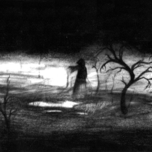 THE WOMAN IN THE SHADOWS<br /> This would make a nice story.<br /> Each night a woman appears.<br /> She floats across the dimly lit garden.<br /> No one knows where she came from<br /> or who she's looking for.<br /> I look out my window<br /> and see her every night.<br /> One night she doesn't appear.<br /> Did she find what she was looking for?<br /> Did she find her true love?<br /> I will never know but I still wait for her.