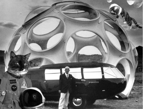 Buckmeowster Fuller - space cat monohex portal