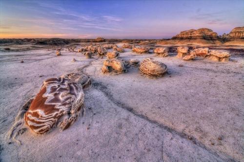 """El 41.170 hectáreas Bisti / De-Na-Zin desierto es una zona remota del desierto y erosionadas tierras baldías, que ofrece algunos de los paisajes más inusuales se encuentran en la región de las Cuatro Esquinas.  El tiempo y los elementos naturales han grabado un mundo de fantasía de extrañas formaciones rocosas y fósiles.  Se trata de un entorno en constante cambio que ofrece al visitante una experiencia en el desierto remoto.  Traducido del idioma navajo, Bisti significa """"una gran área de las colinas de esquisto bituminoso"""" y es comúnmente pronunciado (Bis-empate).  De-Na-Zin (Deh-nah-zin) toma su nombre de las palabras navajos para Petroglifos de las grúas se han encontrado al sur del desierto area.Photo: Raghuveer Makala - Bureau of Land Management """"grúas""""."""