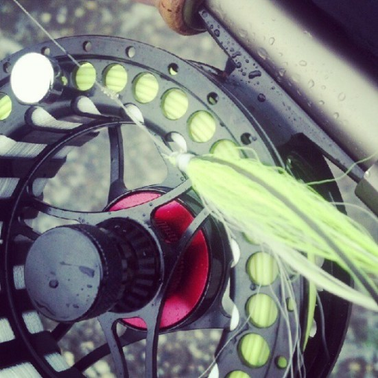 Flatwing and fly reel