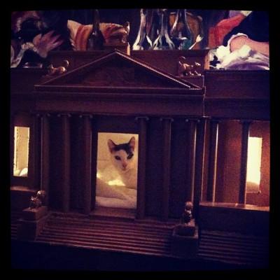 My new house #rcoi #richkitties #livinglarge by thefackelmayer