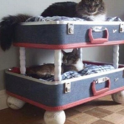 Double decker beds. Meow. by ozgulhakan