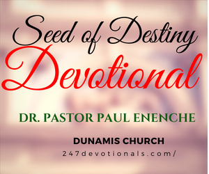 Seed Of Destiny 7 September 2018