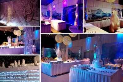 Kerstfeest zakelijk evenement of personeelsfeest met thema Ice Age, Winterwonderland of Frozen afbeelding 4