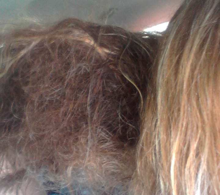 Top Ten Reasons I Hate Girls with Pretty Hair – For Pretty Girls Stuck in a Frizzy Funk