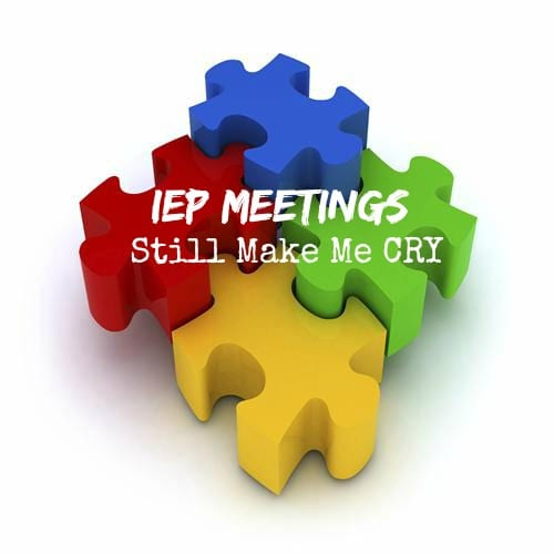 IEP Meetings Still Make Me Cry: The Two Today Were No Exception