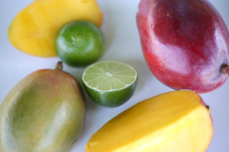MANGO SMOOTHIE INGREDIENTS