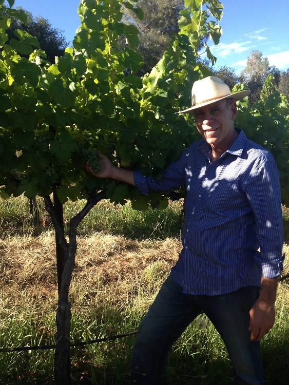 Paul Schmitz checking the vineyard