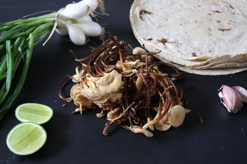 Wild Mushroom & Garlic Tacos I 24 Carrot Life