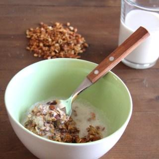 Sugar Free Granola with Protein Milk