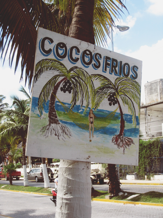 Cocos Frios - Isla Mujeres // 24 Carrot Life