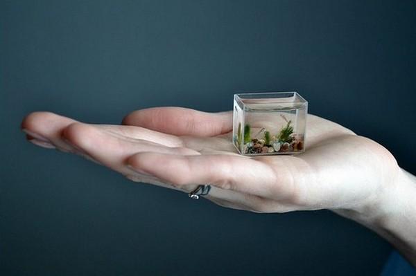 Обзор самых маленьких гаджетов в мире (10 фото) » 24Gadget ...