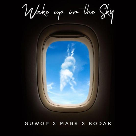 Wake Up In The Sky Stream