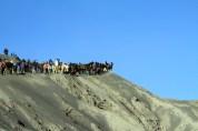 Bromo dan kuda-kudanya