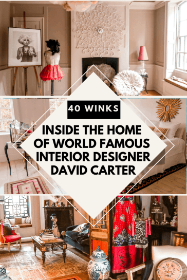 interior designer David Carter 40 winks